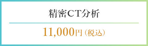 精密CT分析11,000円(税込)