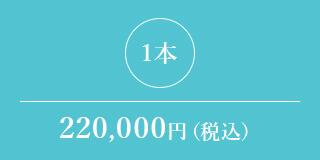 1本 220,000円(税込)