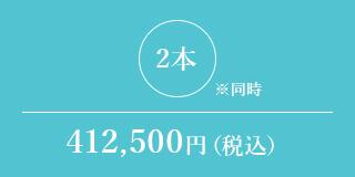 2本※同時 412,500円(税込)